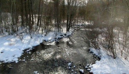 February does have some consolation -- Chatfield Brook in our favorite dog walking area
